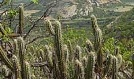 Santa Luzia - Serra do Talhado foto Cacio Murilo.jpg