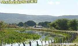 Santar�m - Estrada