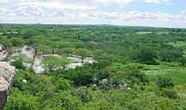 Santo André - Vegetação local