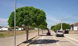 São Domingos de Pombal - Entrada da cidade de São Domingos de Pombal-Foto:Evandro Queiroga
