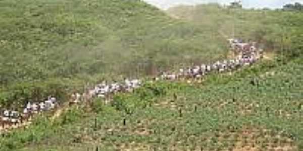 XI Cavalgada de São José de Marimbas-Foto:portalczn.