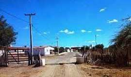 São José do Brejo do Cruz - São José do Brejo da Cruz-PB-Mata Burro na entrada da cidade-Foto:vereadorajanaina.blogspot.com