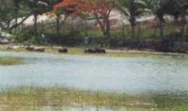 Serra da Raiz -  Por zamba