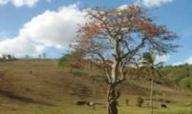 Serra Redonda -  Por Valéria Alves