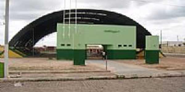 Ginásio Poliesportivo em Casa Nova-Foto:edelson153