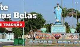 Águas Belas - Águas Belas-PE-Imagem de N.Sra.da Conceição na entrada da cidade-Foto:blogdoruimedeiros.