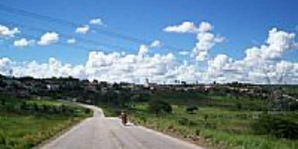 Angelim vista parcial-Foto:Elio Rocha
