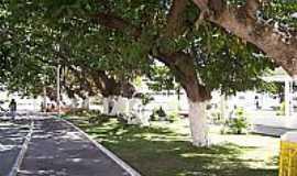 Arcoverde - Praça Virgínia Guerra-Foto:José Lins A.Filho