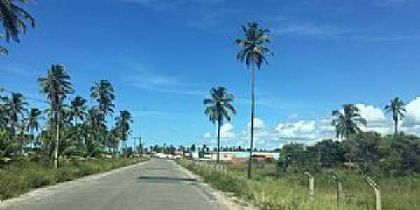 Barra do Sirinhaém-PE-Chegando na cidade pela Rodovia PE-061-Foto:Dedé de Zé Luca