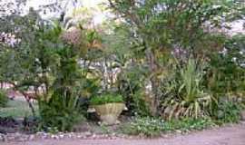 Belo Jardim - Arborização do parque do Bambu