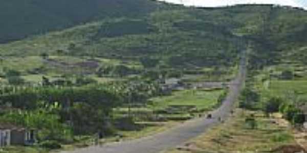 Belíssima paisagem de estrada em Cedro-Foto:Magno Lima