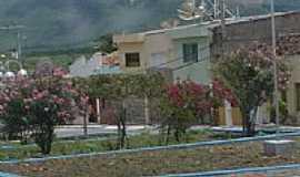 Flores - Pracinha-Foto:magalhães jaime
