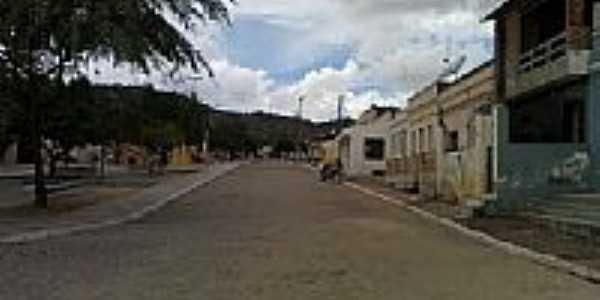 Gonçalves Ferreira-Foto:tony131181