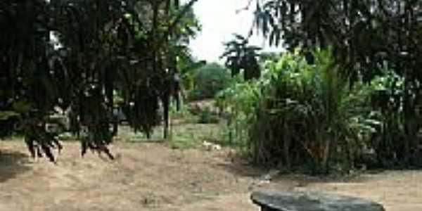 Parque Teimosão-Foto:jose airton alexandr…
