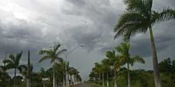 Cocos-BA-Saída para Coribe-Foto:Rômulo Henok