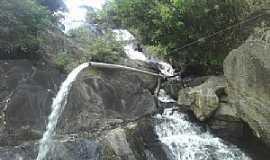 Jaqueira - Jaqueira-PE-Cachoeira em sítio-Foto:Camaleão das Folhagens