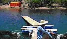 Jatob� - Lago do Moxot�-Foto:nordesterural