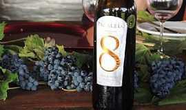 Lagoa Grande - Lagoa Grande-PE-Melhores Vinhos e Uvas-Foto:es.pinterest.com