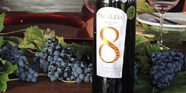 Lagoa Grande-PE-Melhores Vinhos e Uvas-Foto:es.pinterest.com