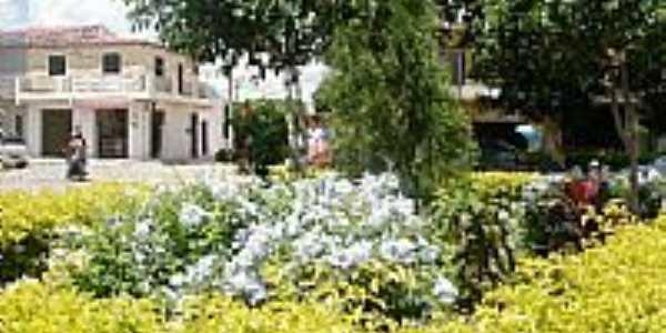 Moreilândia-PE-Jardins da cidade-Foto:jucier