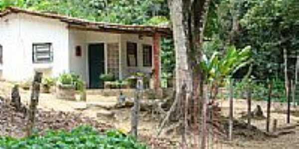 Casa em área rural de Pau Ferro-Foto:Luis Bruno Galvao Gu…