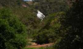 Poço Fundo - Cachoeira Grande (hidrelétrica de poço fundo), Por Diego Gomes Freitas