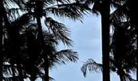 Recife - Vista parcial da orla de Recife-PE-Foto:matias Fogliacco