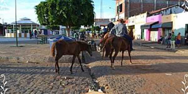 Imagens da cidade de Santa Filomena - PE