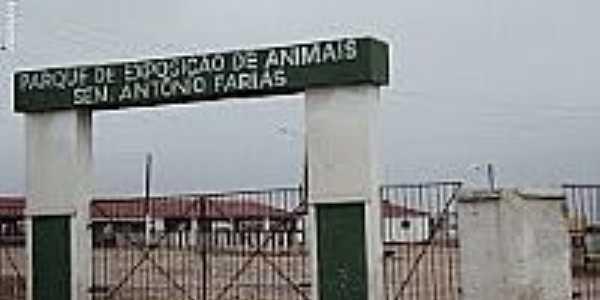 Parque de Exposi��es de animais Sen.Ant�nio Farias em Surubim-Foto:Sergio Falcetti