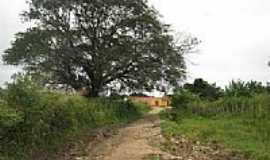 Tabocas - Chegada ao Distrito de Tabocas-Foto:Magno Lima