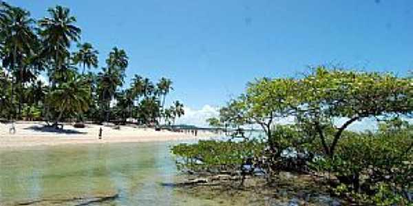 Imagens da cidade de Tamandaré - PE Foto Portal Tamandaré