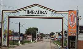 Timba�ba - Timba�ba-PE-P�rtico de entrada da cidade-Foto:Sergio Falcetti