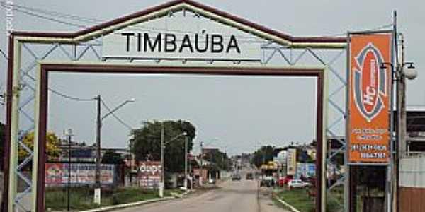 Timbaúba-PE-Pórtico de entrada da cidade-Foto:Sergio Falcetti
