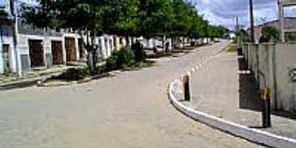 Avenida-Foto:educarencantando