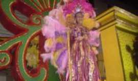 Vitória de Santo Antão - Fantasia de destaque O camelo Carnaval 2010, Por Marconi Sandres