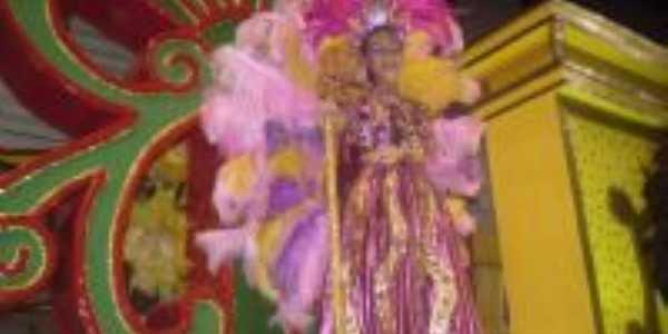 Fantasia de destaque O camelo Carnaval 2010, Por Marconi Sandres