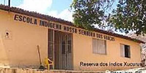 Escola Indígena-Foto:onordeste