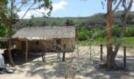 Baixa Grande do Ribeiro - Casa no gerais, Por Amauri F.Santos