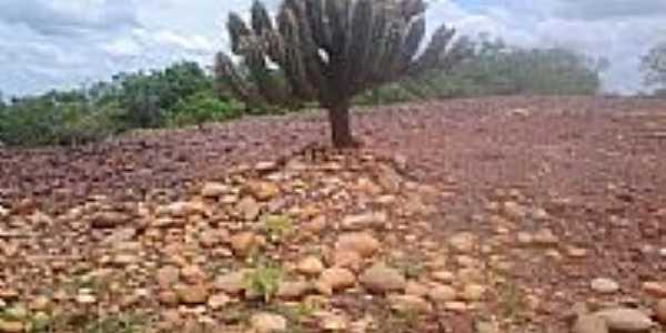 Brejo do Piauí - Foto por leandro.sbrissa (Panoramio)