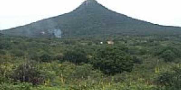 Morro dos Oitis,ponto mais alto de Dom Inocêncio-Foto:raimundo campos