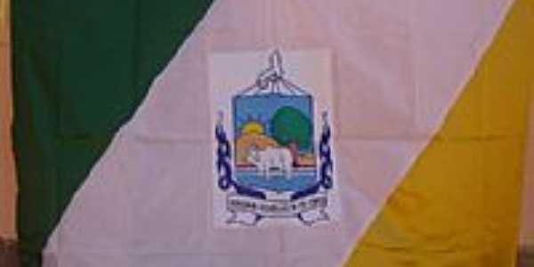 Bandeira da cidade de Isaias Coelho-PI