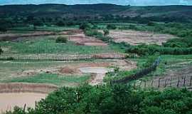 Jo�o Costa - Jo�o Costa-PI-Deserto Vermelho no per�odo de chuva-Foto:Barraginhas