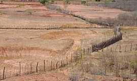Jo�o Costa - Jo�o Costa-PI-Deserto Vermelho no per�odo de seca-Foto:Barraginhas