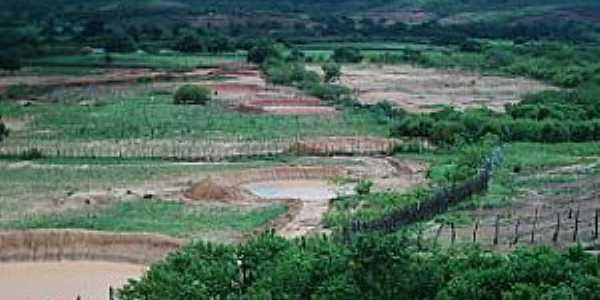 João Costa-PI-Deserto Vermelho no período de chuva-Foto:Barraginhas