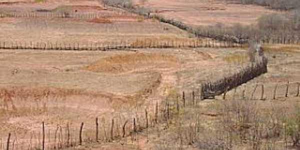 João Costa-PI-Deserto Vermelho no período de seca-Foto:Barraginhas