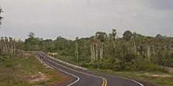 Rodovia PI-326-Foto:estacaopiaui