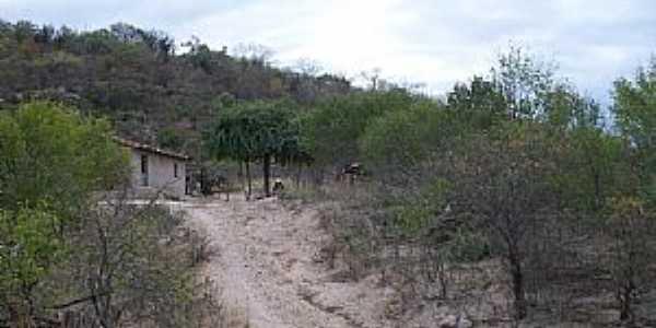 Massapê do Piauí-PI-Área rural-Foto:marco.maciel