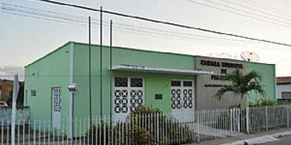 Câmara Municipal de Palmeirais Piauí, Por Alexandro Dias