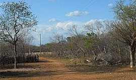 São Francisco de Assis do Piauí - São Francisco de Assis do Piauí-PI-Caatinga-Foto:www.portalaz.com.br