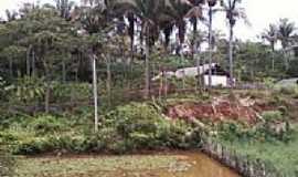 S�o Jo�o do Arraial - �rea rural-Foto:joaquim pompilio